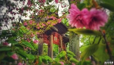 【走四方】+拥抱春天