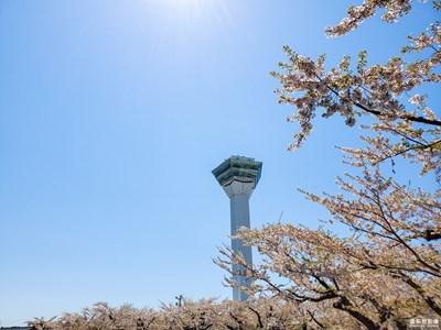 【异乡】+日本