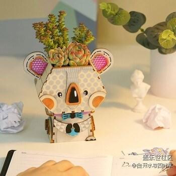 12月北京星部落线下活动—盆之物语及多肉DIY