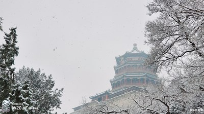 W20 5G  冬雪