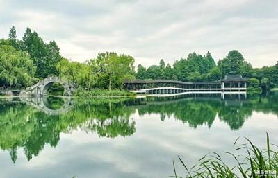 在夏日+杭州的夏天