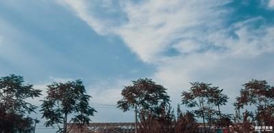 已開獎【蓋樂世影像周賽第145期】——夏日色彩