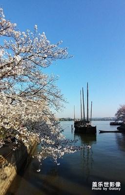 [角度与视觉]+春到太湖