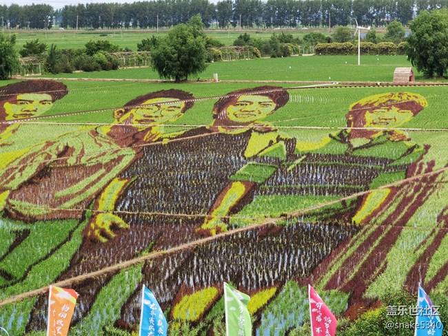 稻的顏色——夢的空間